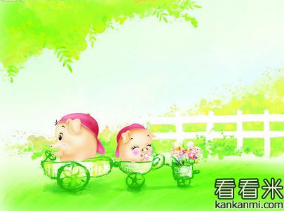 感人爱情故事推荐:两只小猪的凄美爱情