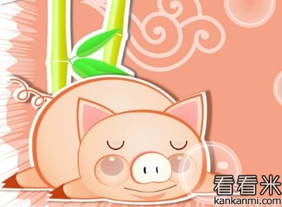 爱发脾气的小猪胖胖