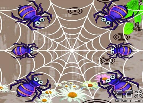 暴风与蜘蛛的故事