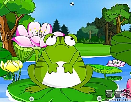 幼儿园青蛙成长过程