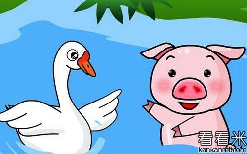 小脏猪与白天鹅的故事