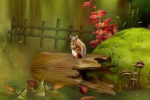 到处买梦的小松鼠