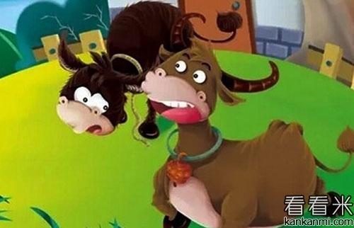 水牛和毛驴的故事