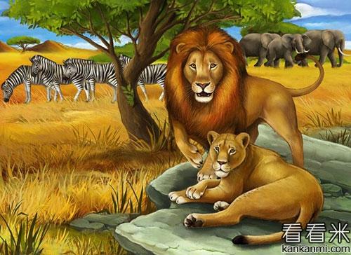 狮妈妈和小狮子爬山的故事