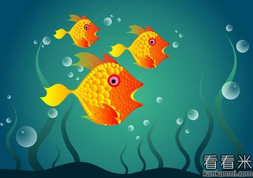 鱼缸里的三条金鱼