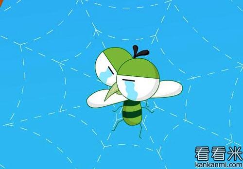 自诩自夸的蚊子