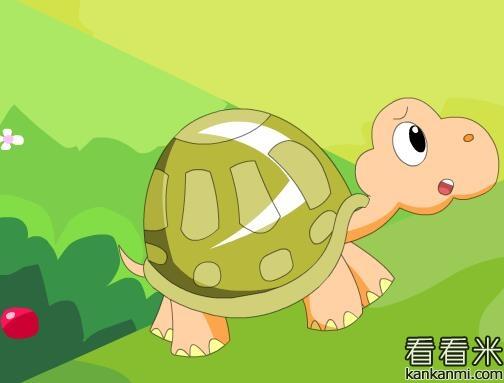 小乌龟送羽毛的故事