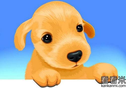 小黄狗学唱歌的故事