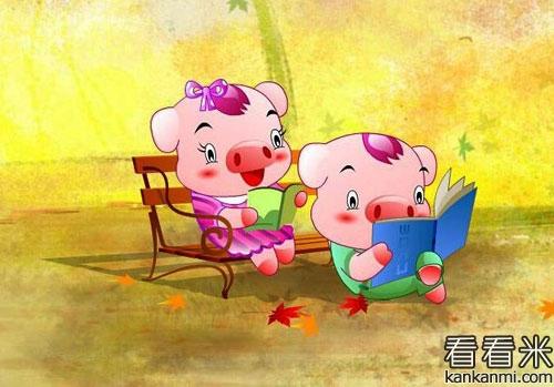 小猪看书的故事