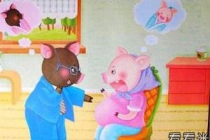 猪太太生宝宝