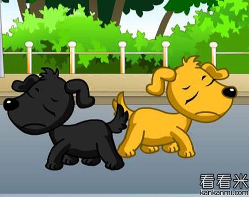 辩论不断的两只小狗